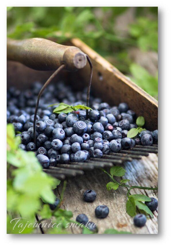 domowa nalewka jagodowa czarne jagody jagodzianka